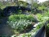 market-garden_0