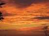 red-sky-by-night